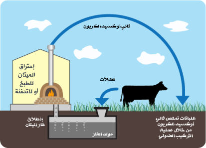 biogas-production-cycle